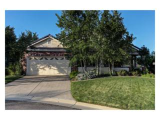 9528 Brook Hill Drive, Lone Tree, CO 80124 (MLS #5724614) :: 8z Real Estate