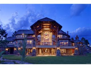 1126 Longbow Place, Larkspur, CO 80118 (MLS #5725652) :: 8z Real Estate