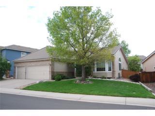 10044 Oak Leaf Way, Highlands Ranch, CO 80129 (MLS #5796766) :: 8z Real Estate