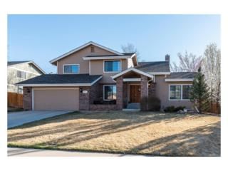 8732 Cedarwood Lane, Highlands Ranch, CO 80126 (#5848984) :: The Peak Properties Group