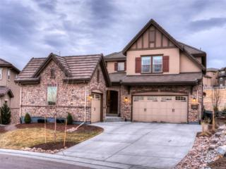 1222 Starglow Place, Highlands Ranch, CO 80126 (#5991870) :: The Peak Properties Group