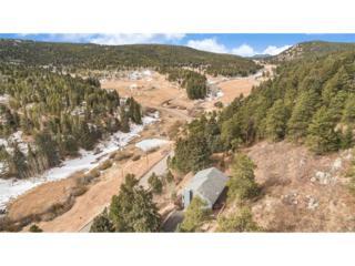 18899 Pleasant Park Road, Conifer, CO 80433 (MLS #6104864) :: 8z Real Estate