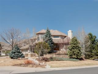 9287 E Star Hill Trail, Lone Tree, CO 80124 (#6249834) :: The Peak Properties Group