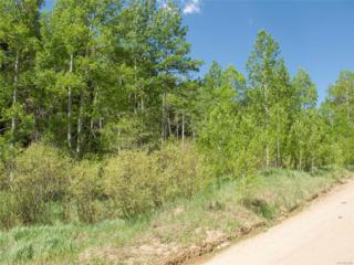 0 Mountain Meadows, Black Hawk, CO 80422 (#6282083) :: Thrive Real Estate Group