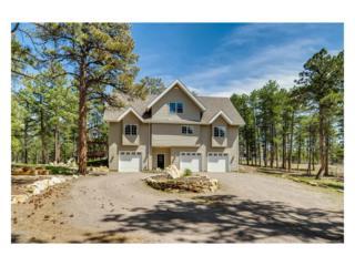 4753 Shoshone Drive, Larkspur, CO 80118 (MLS #6291128) :: 8z Real Estate