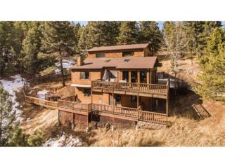 24937 Red Cloud Drive, Conifer, CO 80433 (MLS #6325781) :: 8z Real Estate