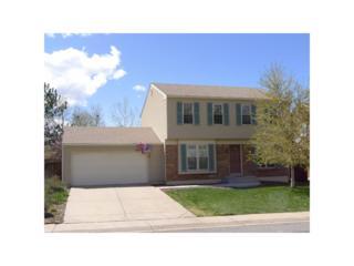 4755 S Xenon Way, Morrison, CO 80465 (MLS #6328692) :: 8z Real Estate