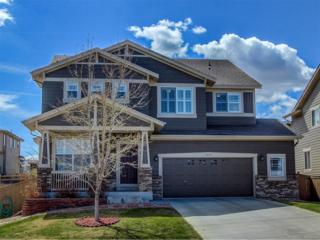 5531 Fox Meadow Avenue, Highlands Ranch, CO 80130 (MLS #6346121) :: 8z Real Estate