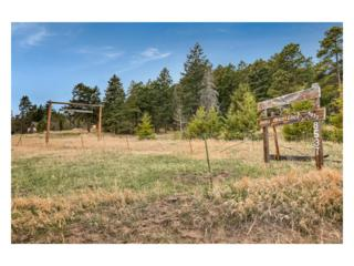 8537 Doubleheader Ranch Road, Morrison, CO 80465 (MLS #6372775) :: 8z Real Estate