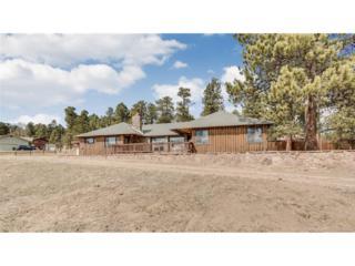 29715 Woods Drive, Evergreen, CO 80439 (#6432307) :: The Peak Properties Group