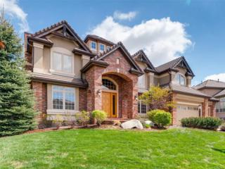 9566 S Silent Hills Drive, Lone Tree, CO 80124 (MLS #6648027) :: 8z Real Estate