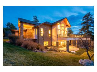 5088 S Perry Park Road, Sedalia, CO 80135 (MLS #6693448) :: 8z Real Estate