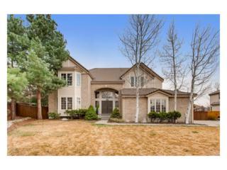 7707 Edgewater Court, Lone Tree, CO 80124 (#6723595) :: The Peak Properties Group
