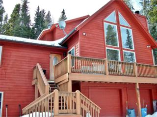 456 Sawmill Lane, Idaho Springs, CO 80452 (MLS #6747421) :: 8z Real Estate