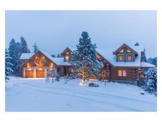 7181 S Andrea Lane, Morrison, CO 80465 (#6772969) :: The Peak Properties Group