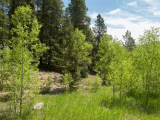 0 Mountain Meadows Drive, Black Hawk, CO 80422 (#6774264) :: Thrive Real Estate Group