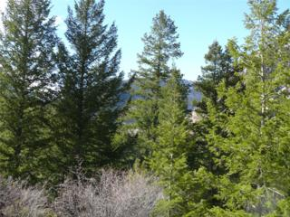 0 Skyline Drive, Georgetown, CO 80444 (MLS #6828206) :: 8z Real Estate