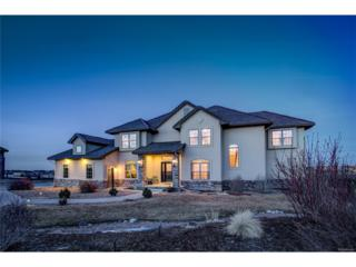 1745 Moonstone Lane, Castle Rock, CO 80108 (#6840367) :: The Peak Properties Group