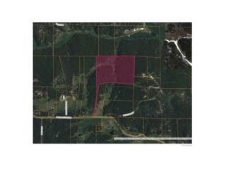 Pleasant Park Road, Conifer, CO 80433 (MLS #6842878) :: 8z Real Estate