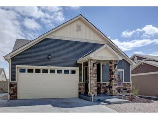 19600 E 53rd Avenue, Denver, CO 80249 (#6860304) :: Thrive Real Estate Group