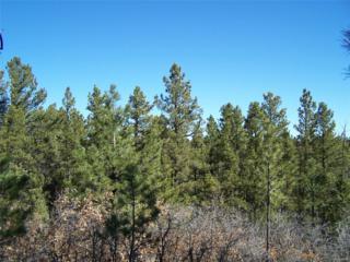 4535 Cheyenne Drive, Larkspur, CO 80118 (MLS #6880460) :: 8z Real Estate