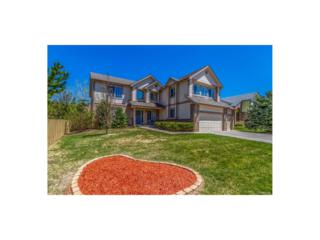 10606 Clarke Farms Drive, Parker, CO 80134 (MLS #6998503) :: 8z Real Estate