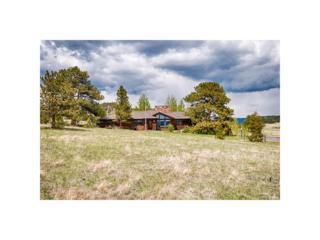 2421 Hondius Way, Estes Park, CO 80517 (MLS #7078382) :: 8z Real Estate