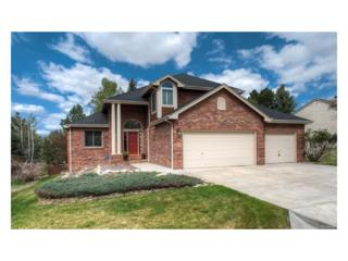 5173 Red Oak Way, Parker, CO 80134 (#7145721) :: The Peak Properties Group