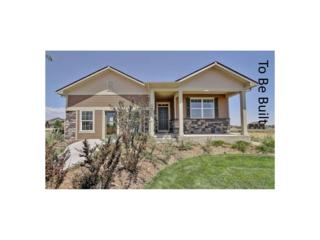 2268 Stonefish Drive, Windsor, CO 80550 (MLS #7297210) :: 8z Real Estate
