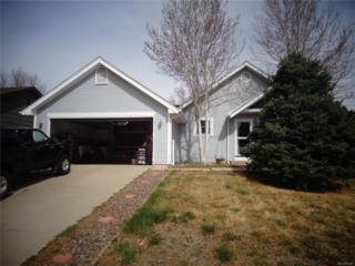 1423 W 135th Place, Westminster, CO 80234 (#7300453) :: The Peak Properties Group