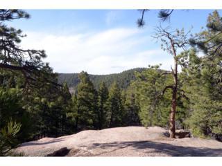 State Highway 67, Sedalia, CO 80135 (MLS #7352231) :: 8z Real Estate