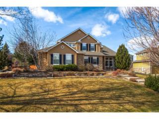 3387 Elk Run Drive, Castle Rock, CO 80109 (MLS #7355852) :: 8z Real Estate
