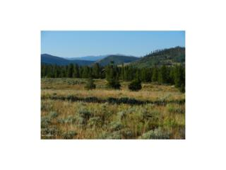 416 Williss Drive, Granby, CO 80446 (#7375125) :: The Peak Properties Group