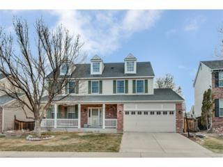 9738 Newcastle Drive, Highlands Ranch, CO 80130 (#7398959) :: The Peak Properties Group