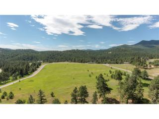 High Drive, Morrison, CO 80465 (#7412774) :: The Peak Properties Group