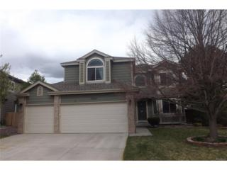 17057 Wellington Drive, Parker, CO 80134 (#7440858) :: The Peak Properties Group