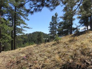 0 Sky Meadow Lane, Golden, CO 80401 (#7520843) :: The Peak Properties Group