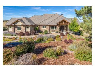 9911 Sara Gulch Circle, Parker, CO 80138 (MLS #7584022) :: 8z Real Estate