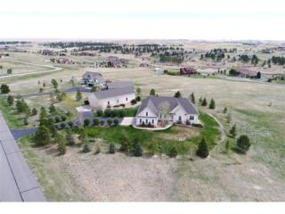 46374 Sunset View Way, Parker, CO 80138 (#7630113) :: The Peak Properties Group