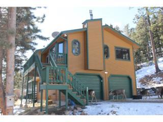13375 Shiloh Road, Conifer, CO 80433 (MLS #7781238) :: 8z Real Estate