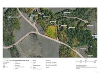 21 Cinnamon Trail, Jefferson, CO 80456 (#7784190) :: Thrive Real Estate Group