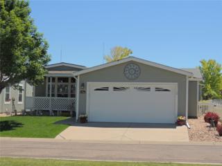 7755 Primrose Green #162, Frederick, CO 80530 (MLS #7787852) :: 8z Real Estate