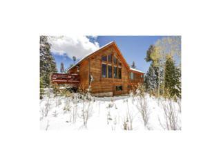 11617 Green Circle, Conifer, CO 80433 (MLS #7815313) :: 8z Real Estate