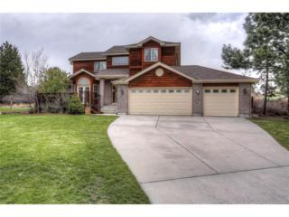 7343 Windwood Circle, Parker, CO 80134 (#7871743) :: The Peak Properties Group