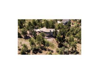 6960 Fox Circle, Larkspur, CO 80118 (MLS #7896679) :: 8z Real Estate