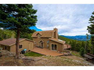 318 Castlewood Drive, Evergreen, CO 80439 (MLS #8005729) :: 8z Real Estate