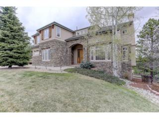 8851 Windhaven Drive, Parker, CO 80134 (MLS #8017252) :: 8z Real Estate