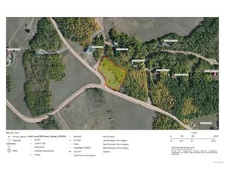 1008 Boreas Circle, Jefferson, CO 80456 (#8032686) :: Thrive Real Estate Group