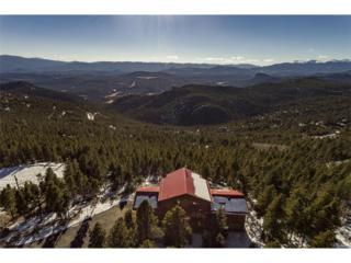 31319 Timothys Trail, Conifer, CO 80433 (MLS #8042046) :: 8z Real Estate