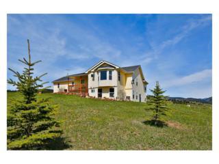 831 Cattle Drive Road, Loveland, CO 80537 (MLS #8169303) :: 8z Real Estate